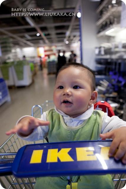 再逛IKEA