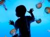 南京海底世界